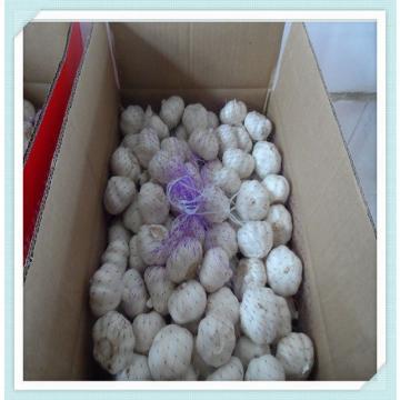 Fresh Normal White Garlic (10kg/Mesh Bag) Jinxiang garlic factory