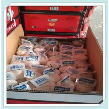China fresh normal white garlic price 2015 in refrigerator