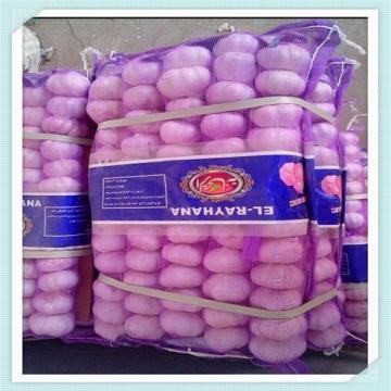Natural Fresh Garlic chinese garlic manufacturer from China