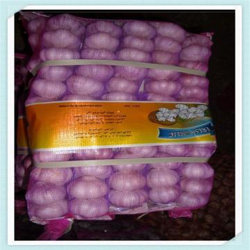 2015 Garlic Hot sale Normal White and Pure Fresh Chinese pure white garlic