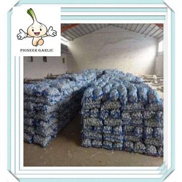 New white Fresh Wholesale Nature Garlic Exporters in China