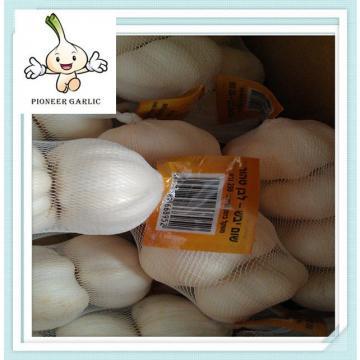Fresh Normal White Jinxiang Garlic (2015 New Crop 5.5cm)