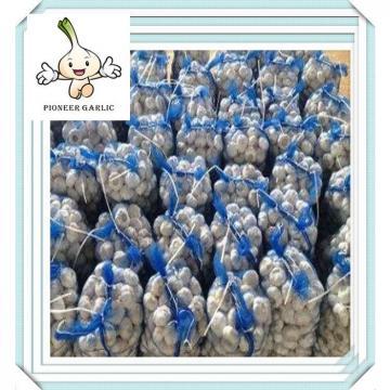 10kg /mesh bag new fresh Normal white garlic -Popular in Market