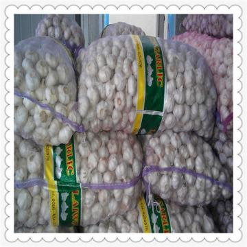 2015 newest hot selling CHINESE FRESH NORMAL WHITE GARLIC