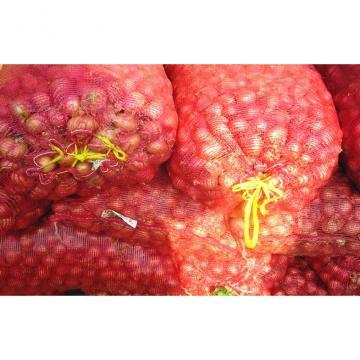 Fresh Red Asian Shallots Containing Vitamin C , Folic Acid For Market, improve immunity