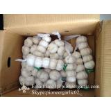 New Crop Chinese 5cm Pure White Fresh Garlic Small Packing In Box