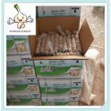 natural normal white garlic fresh garlic in bag and carton