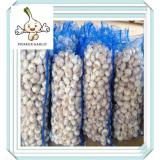 2016 New Fresh Pure White Garlic Wholesale China White Fresh Garlic Export