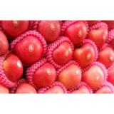 Delicious Fresh Yantai Red Fuji Apple No Spots With Suitable Sour / Sweet, timely delivery, team professionals