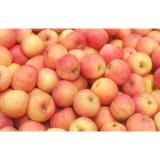 Suitable Sour / Sweet Large Fuji Apple , Juicy Red Delicious Apples
