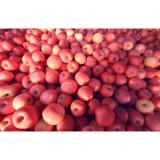Suitable Sour / Sweet Juicy Red Fresh Fuji Apple With Dietary Fiber, thin brittle, juicy, taste sweet, very delicious