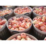 Crisp Bright Red Fuji Apple Sweet / Delicious For Apple Juice