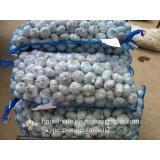2017 New Crop 4.5cm Normal White Fresh Garlic 10kg Mesh Bag Packing