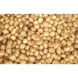 Thin Skin Holland Organic Potatoes Rich Nutritions For Human Health