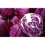 Natural No Infect Chinese Napa Cabbage Contains Potassium , Manganese For Stronger Bone