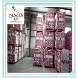 Selected High Quality Fresh Garlic From Manufacturer 5.0 cm Pure White Garlic