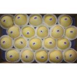 Dietary Fiber Fresh Asian Pears Yellow Crisp Sweet With Vitamin C